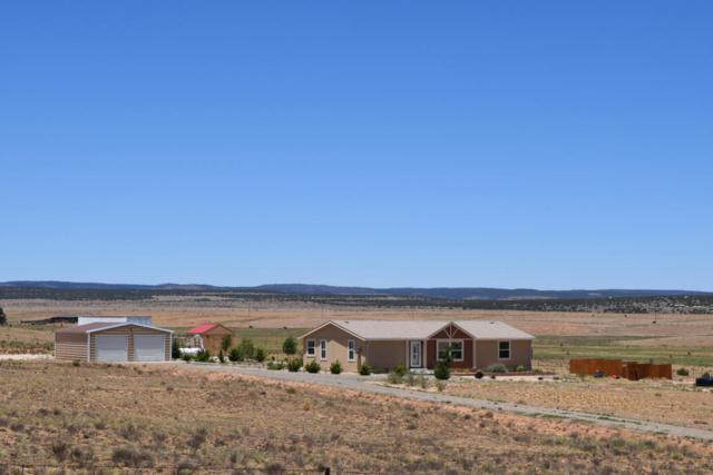 220 Peacock Road, Estancia, NM 87016 (MLS #920360) :: Campbell & Campbell Real Estate Services