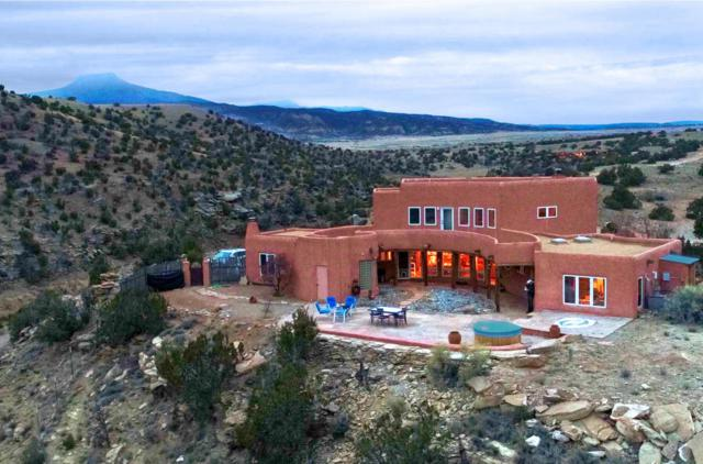 95 Private Drive 1725, Abiquiu, NM 87510 (MLS #920473) :: Campbell & Campbell Real Estate Services