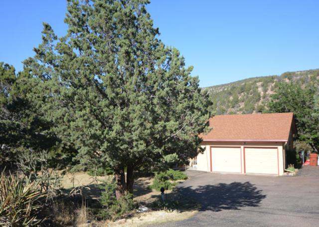 899 State Highway 165 Road, Placitas, NM 87043 (MLS #920522) :: Campbell & Campbell Real Estate Services