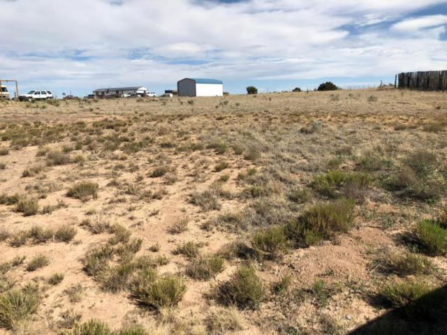 7 Sadlier Court, Moriarty, NM 87035 (MLS #920558) :: Campbell & Campbell Real Estate Services