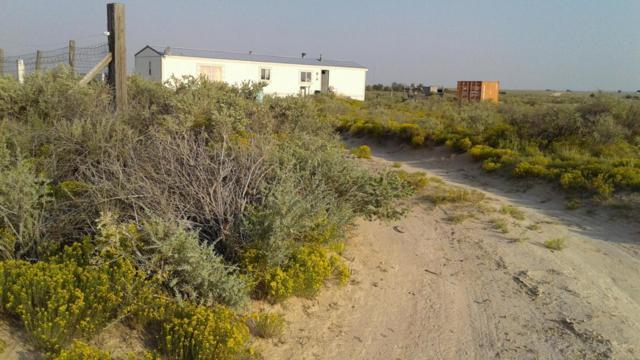29 Percheron Road, Moriarty, NM 87035 (MLS #920661) :: Will Beecher at Keller Williams Realty