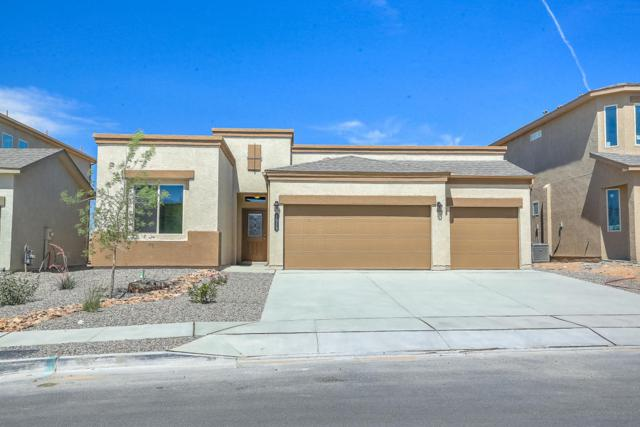 1019 Grace Ct NE, Rio Rancho, NM 87144 (MLS #920737) :: Will Beecher at Keller Williams Realty