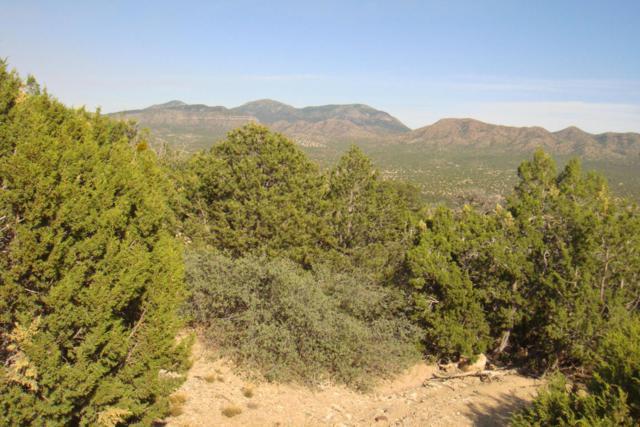 31 La Cantera, Sandia Park, NM 87047 (MLS #920818) :: Will Beecher at Keller Williams Realty