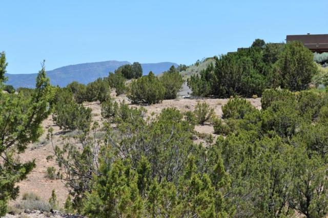 Lot 17 Camino Manzano, Placitas, NM 87043 (MLS #920831) :: Campbell & Campbell Real Estate Services