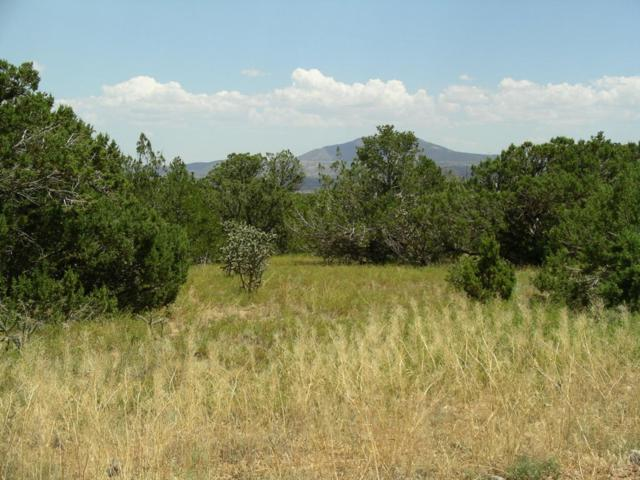 Pinon Park, Sandia Park, NM 87047 (MLS #920939) :: Campbell & Campbell Real Estate Services