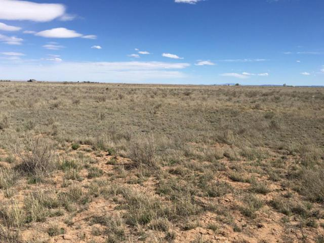Ice Plant Road, McIntosh, NM 87032 (MLS #921002) :: Will Beecher at Keller Williams Realty