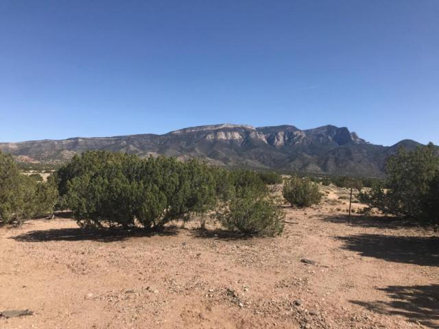 0 Forest Lane, Placitas, NM 87043 (MLS #921108) :: Campbell & Campbell Real Estate Services