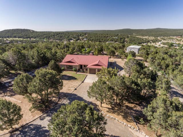 18 Juniper Hills Road, Edgewood, NM 87015 (MLS #921287) :: Will Beecher at Keller Williams Realty