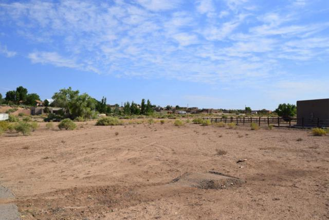 Paseo C De Baca, Corrales, NM 87048 (MLS #921299) :: Campbell & Campbell Real Estate Services