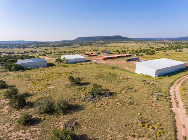 State Highway 55, Mountainair, NM 87036 (MLS #921335) :: Campbell & Campbell Real Estate Services