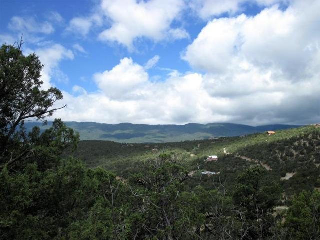 0 Lost Valley Loop, Cedar Crest, NM 87008 (MLS #921576) :: Campbell & Campbell Real Estate Services
