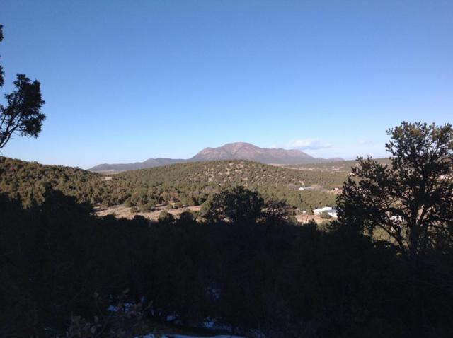 2-A Jack Rabbit Run, Tijeras, NM 87059 (MLS #921588) :: Campbell & Campbell Real Estate Services