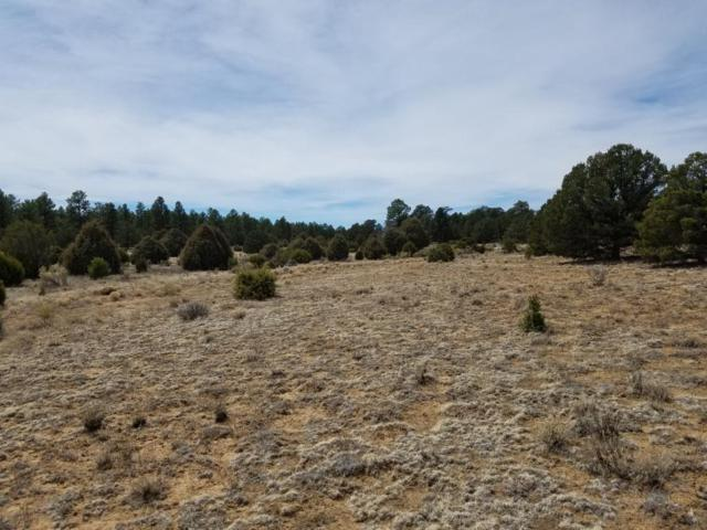 Ph1 Lot 18 Wild Horse Ranch, Pie Town, NM 87827 (MLS #921753) :: Campbell & Campbell Real Estate Services