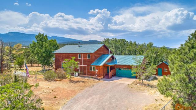 11 Andrew Lane, Sandia Park, NM 87047 (MLS #921867) :: Campbell & Campbell Real Estate Services