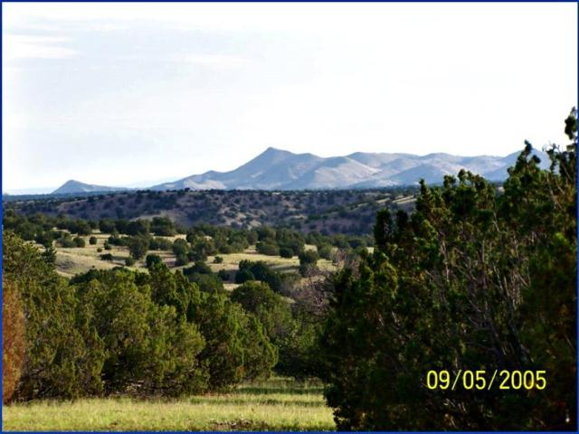 Lot 75 Pinon Springs Road, Magdalena, NM 87825 (MLS #921946) :: Campbell & Campbell Real Estate Services