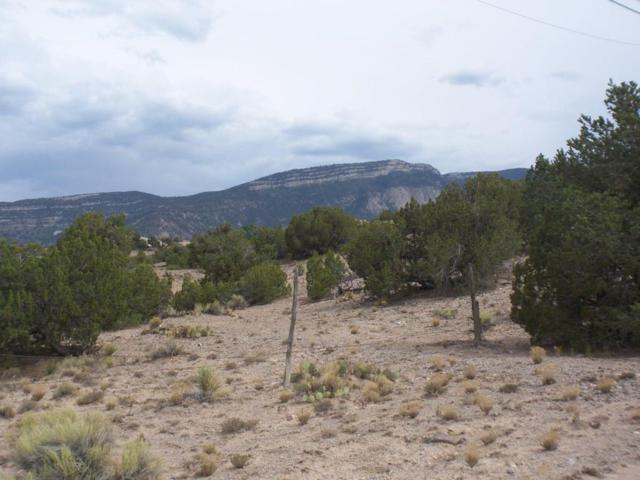 Homesteads Rd, Placitas, NM 87043 (MLS #922023) :: Campbell & Campbell Real Estate Services