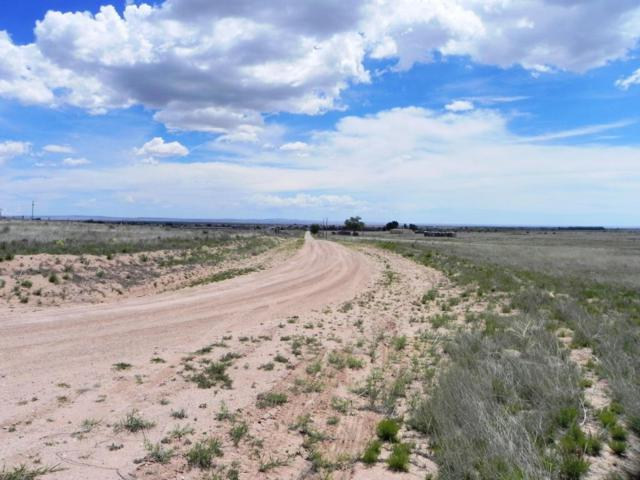0 Irving Road, McIntosh, NM 87032 (MLS #922118) :: Campbell & Campbell Real Estate Services