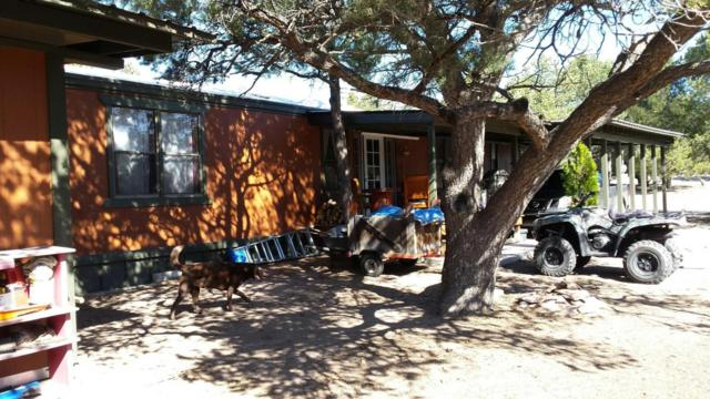 162 Homestead Trail, Datil, NM 87821 (MLS #922327) :: Campbell & Campbell Real Estate Services