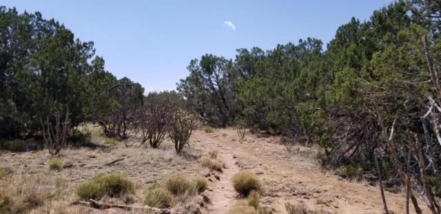 2346 Jumano Trail, Mountainair, NM 87036 (MLS #922330) :: Campbell & Campbell Real Estate Services