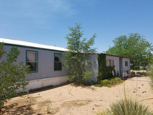 270 El Cerro Mission Road, Los Lunas, NM 87031 (MLS #922475) :: Campbell & Campbell Real Estate Services
