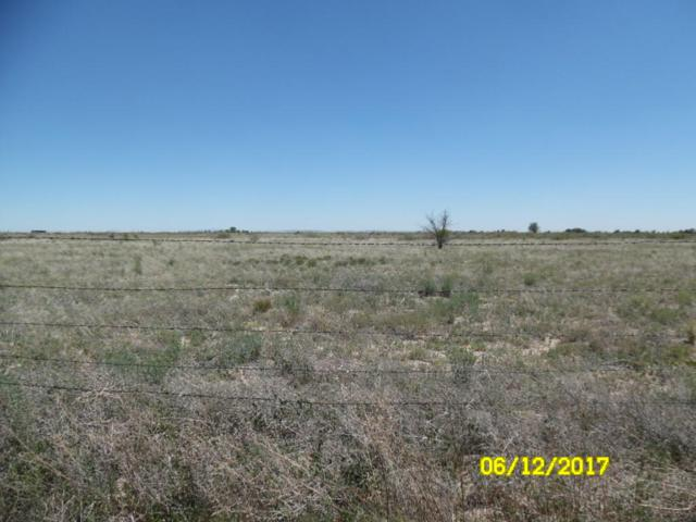 Marc Drive, McIntosh, NM 87032 (MLS #922549) :: Campbell & Campbell Real Estate Services