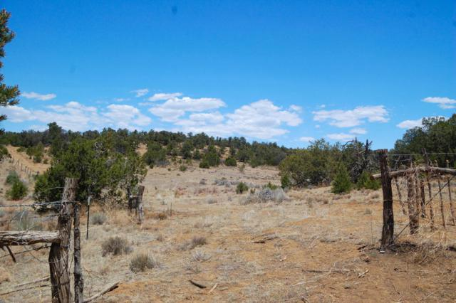 Akt Ranch, Ramah, NM 87321 (MLS #922588) :: Campbell & Campbell Real Estate Services
