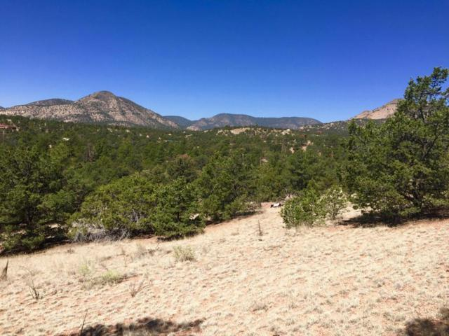 114 Homestead, Datil, NM 87821 (MLS #922742) :: Silesha & Company