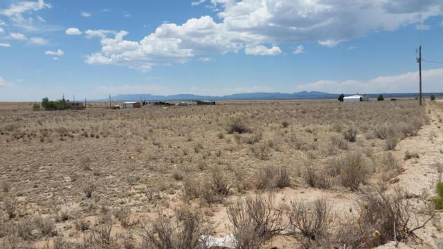 Via Jero Avenue, Moriarty, NM 87035 (MLS #922873) :: The Bigelow Team / Realty One of New Mexico