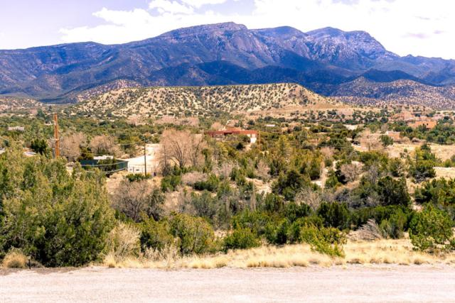 Lot E Yucca Lane, Placitas, NM 87043 (MLS #922903) :: Campbell & Campbell Real Estate Services