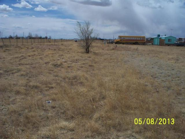 Shetland Street, Moriarty, NM 87035 (MLS #923012) :: Campbell & Campbell Real Estate Services