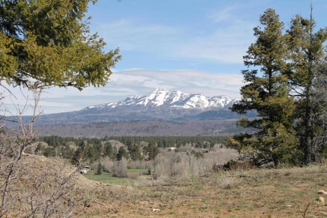 Eagle Nest Larkspur Way, Chama, NM 87520 (MLS #923291) :: The Bigelow Team / Realty One of New Mexico