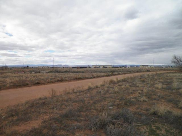 Camino De Manzano (13-4-1) Road NE, Los Lunas, NM 87031 (MLS #923363) :: The Stratmoen & Mesch Team