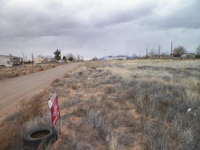Camino De Manzano (13-4-6) Road NE, Los Lunas, NM 87031 (MLS #923370) :: The Stratmoen & Mesch Team