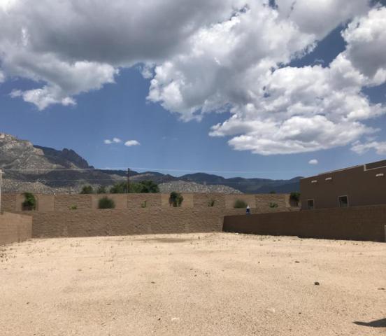 9512 Ridge Vista Drive NE, Albuquerque, NM 87122 (MLS #923514) :: Your Casa Team