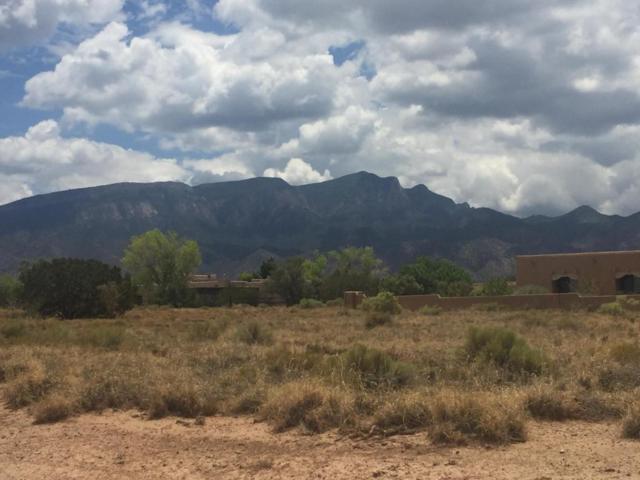 Norte Trail, Placitas, NM 87043 (MLS #923520) :: Your Casa Team