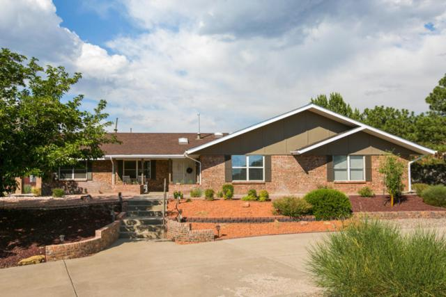 1601 La Cabra Drive SE, Albuquerque, NM 87123 (MLS #923531) :: Your Casa Team