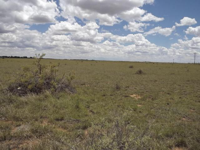 Martinez Road, Moriarty, NM 87035 (MLS #923586) :: Campbell & Campbell Real Estate Services