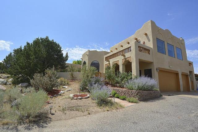 1125 Marigold Drive NE, Albuquerque, NM 87122 (MLS #923700) :: Your Casa Team