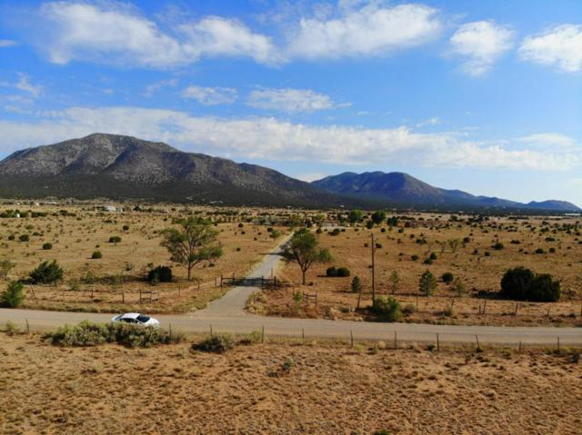 242 Entranosa Road, Edgewood, NM 87015 (MLS #923896) :: Will Beecher at Keller Williams Realty