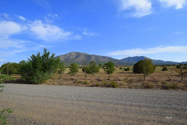 234 Entranosa Road, Edgewood, NM 87015 (MLS #923897) :: Will Beecher at Keller Williams Realty