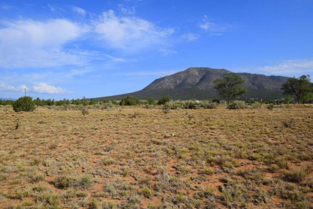 224 Entranosa Road, Edgewood, NM 87015 (MLS #923898) :: Will Beecher at Keller Williams Realty