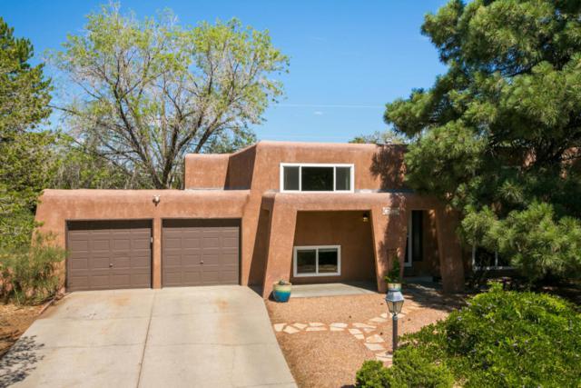 3619 Horacio Court NE, Albuquerque, NM 87111 (MLS #923903) :: Your Casa Team