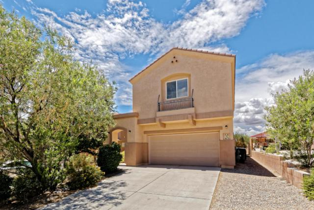 2322 Margarita Drive SE, Rio Rancho, NM 87124 (MLS #923933) :: Your Casa Team