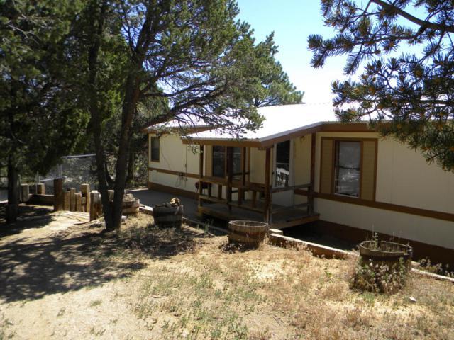 27 Raven Road, Tijeras, NM 87059 (MLS #923953) :: Will Beecher at Keller Williams Realty