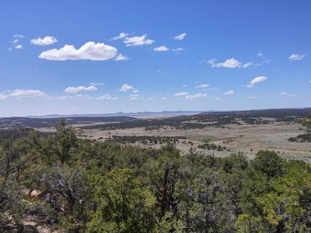 Ph4 Lot 52 Wild Horse Ranch, Pie Town, NM 87827 (MLS #923964) :: Campbell & Campbell Real Estate Services