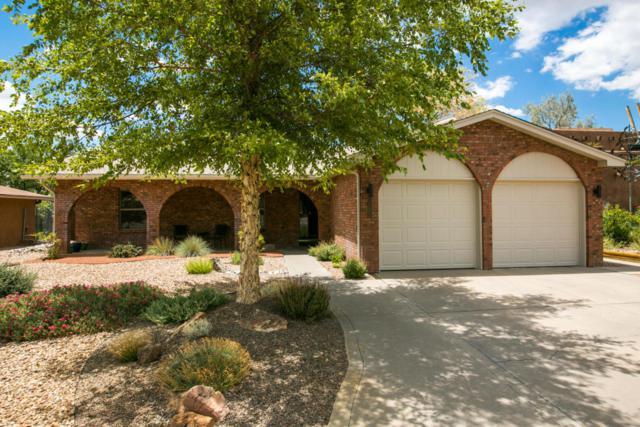 1127 Stutz Drive NE, Albuquerque, NM 87123 (MLS #924013) :: Your Casa Team