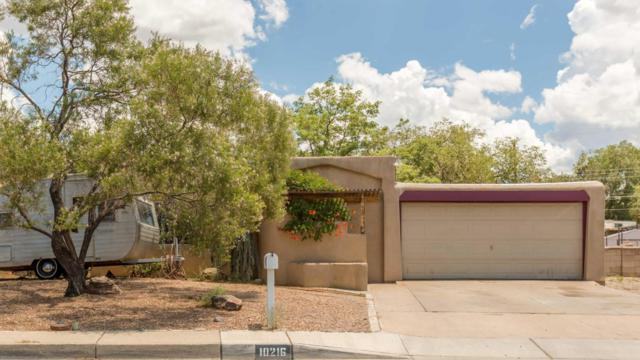 10216 Arvada Avenue NE, Albuquerque, NM 87112 (MLS #924024) :: Your Casa Team