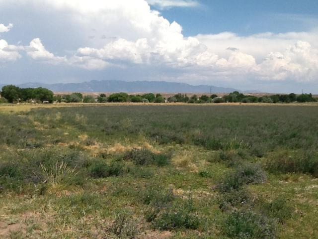 Marquez Road, Los Lunas, NM 87031 (MLS #924062) :: The Buchman Group