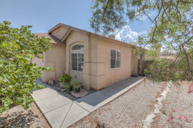 6996 Skylar Drive NE, Rio Rancho, NM 87144 (MLS #924097) :: Will Beecher at Keller Williams Realty