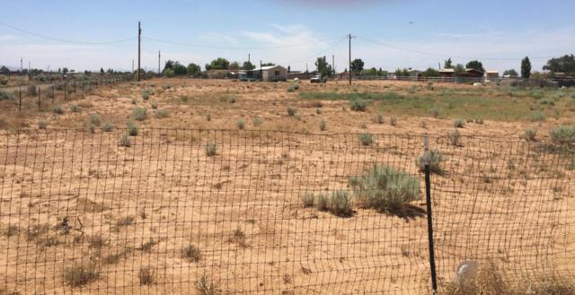 74 High Deal Road NE, Los Lunas, NM 87031 (MLS #924750) :: Campbell & Campbell Real Estate Services